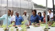 คณะเทคโนโลยีการเกษตร จัดกิจกรรมเพื่อพัฒนาคุณภาพในพื้นที่อำเภอลำลูกกาและอำเภอหนองเสือ จังหวัดปทุมธานี โดยเชิญผู้ที่สนใจ เข้าร่วมประชุมหารือและวางแผนดำเนินกิจกรรมในปีงบประมาณ 2556 และปีต่อๆไป พร้อมทั้งเข้าเยี่ยมชมงานของคณะเทคโนโลยีการเกษตร เมื่อวันที่ 3 เมษายน 2556 เวลา 09.30-12.00 น. ณ คณะเทคโนโลยีการเกษตร(ศูนย์รังสิต)  ภาพถ่ายโดย : คณะเทคโนโลยีการเกษตร จัดทำอัลบั้มภาพโดย : งานพัฒนาและเผยแพร่ข้อมูลเว็บไซต์ สำนักวิทยบริการและเทคโนโลยีสารสนเทศ มทร.ธัญบุรี